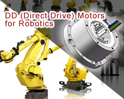 MotionKing Direct Drive Motors (DD motors)